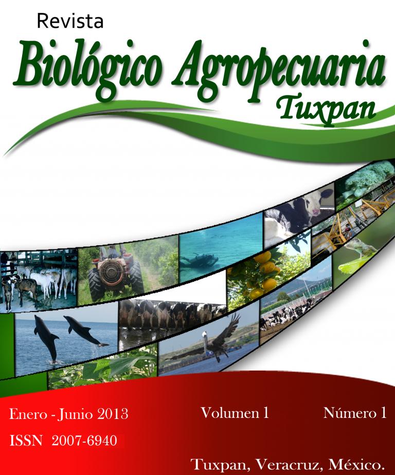 Ver Vol. 1 Núm. 1 (2013)