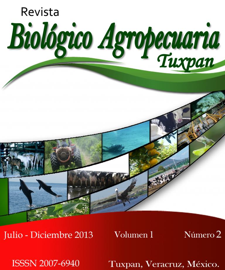 Ver Vol. 1 Núm. 2 (2013)